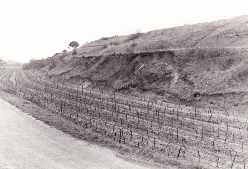 ancien tracé du canal. 1986.jpg