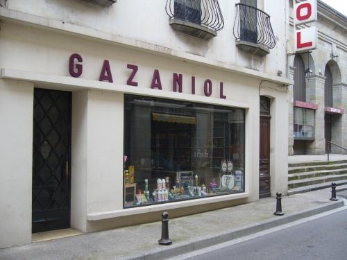 Gazaniol 2.JPG