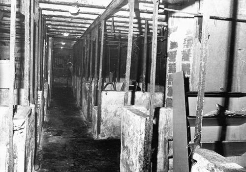 Dessous de la Halle à la Boucherie en 1977.jpg