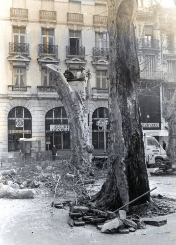 Suppression platannes malades Place Carnot Hiver 1987.jpg